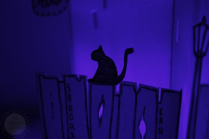 gato jazz